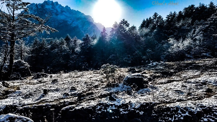 snow in yumthang valley