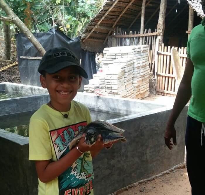 Kasgoda Turtle Hatchery