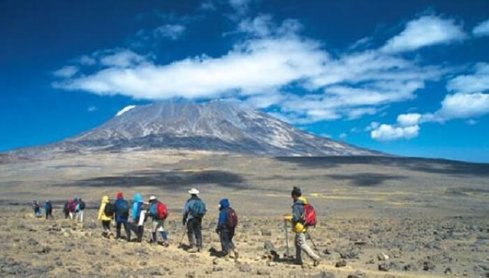 trekkers at marangu route kilimanjaro