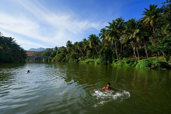 pollachi, among the best tourist places in south india during summer