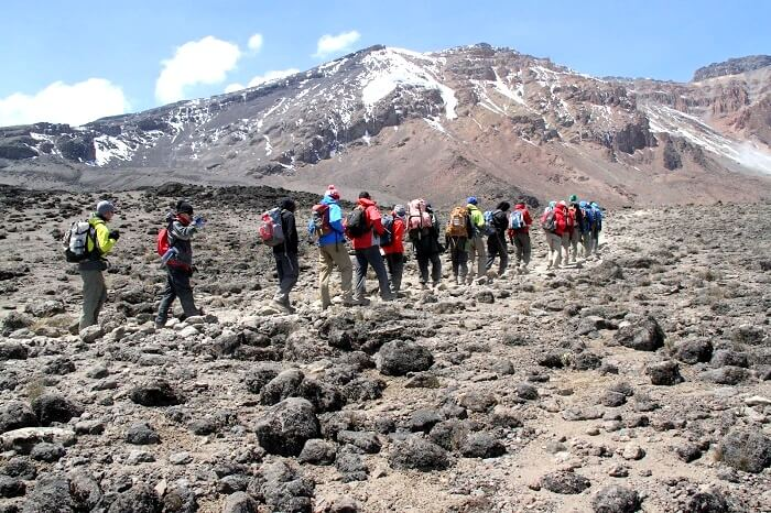 trekkers at rongai route kilimanjaro