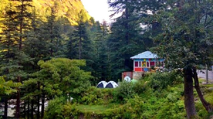 woodrose cafe in kasol