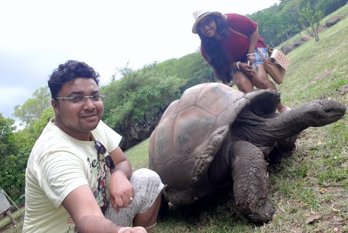 Himanshu honeymoon trip to Mauritius: interacting with tortoises