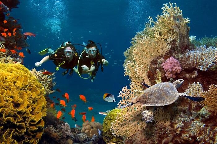 Travelers enjoy scuba diving