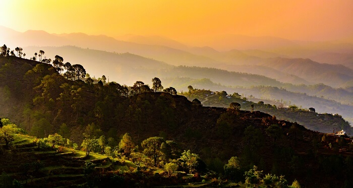 Binsar Wildlife Sanctuary at dusk