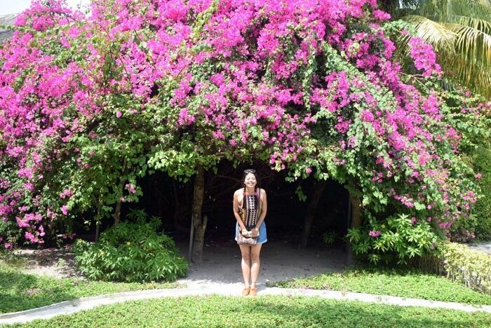 sushmita maldives honeymoon: day 2 flowers