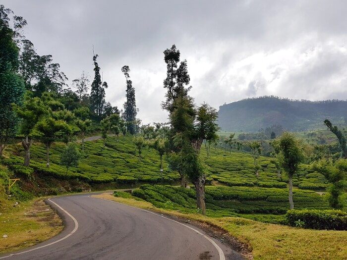 how to reach ooty hill station
