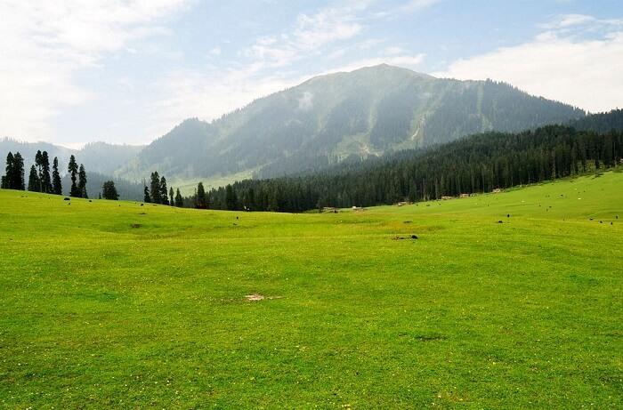 Yusmarg, Kashmir