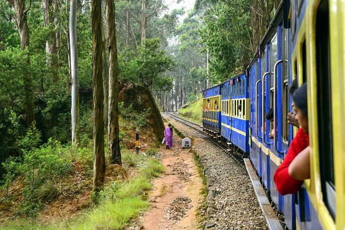 A joyride aboard the Nilgiri Mountain Railways