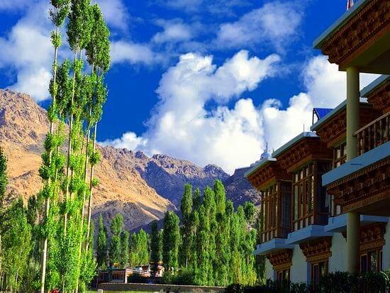 stay in ladakh at Gangba Homestay