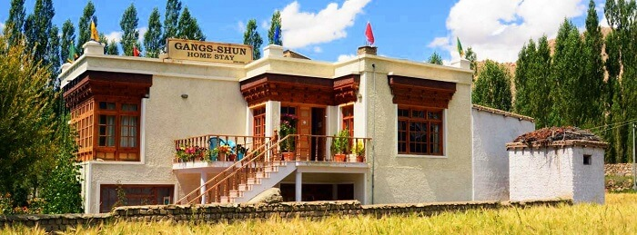 stay in ladakh at Gangs Shun Homestay
