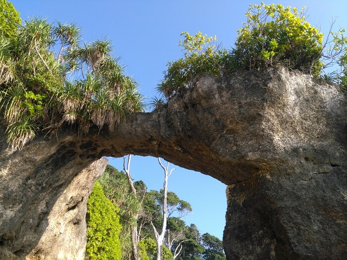 natural bridge in andaman
