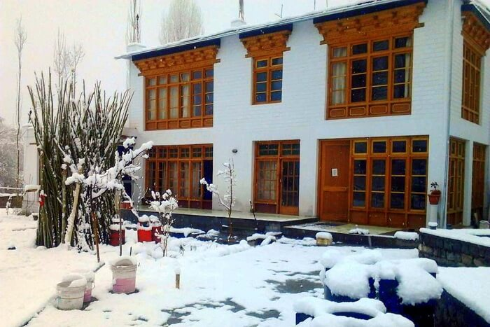 stay in ladakh at Jimmy's Homestay