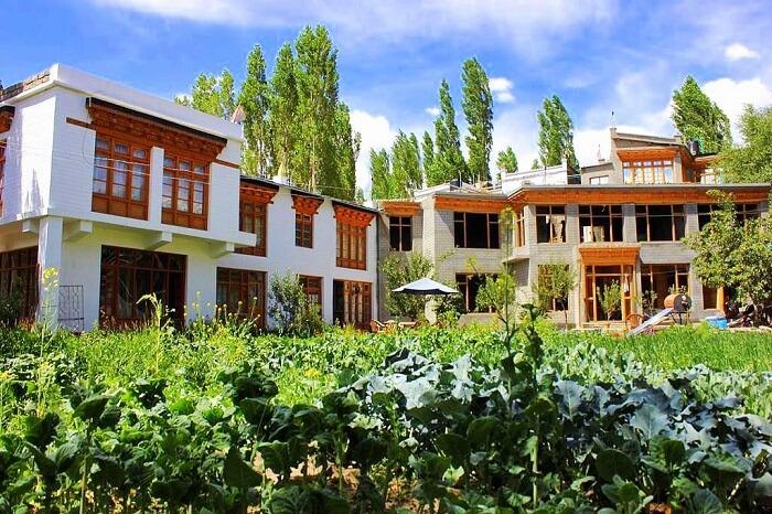 stay at Tukchu Homestay in ladakh