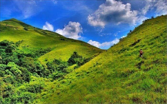 acj-1704-trekking-in-coorg (5)