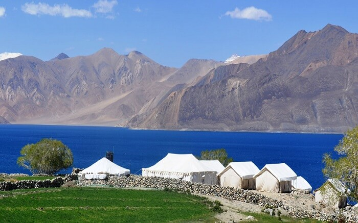 acj-2404-camping-in-leh (4)