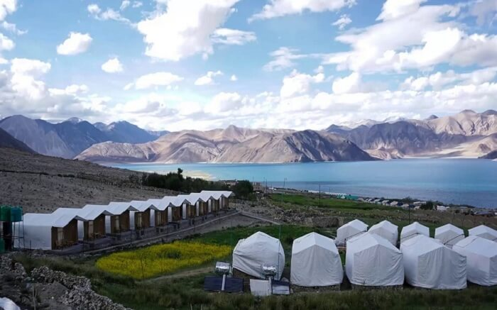 acj-2404-camping-in-leh (5)