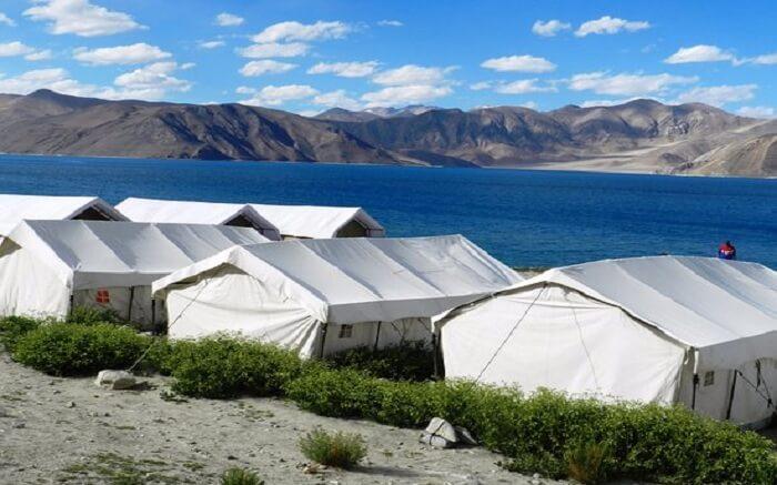 acj-2404-camping-in-leh (6)