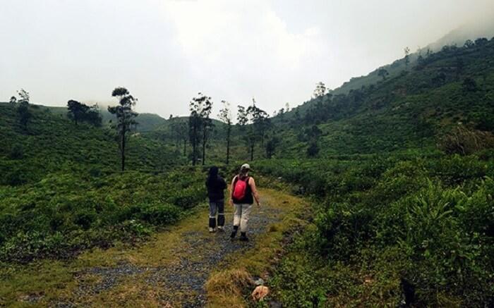 acj-trekking-in-kandy (9)