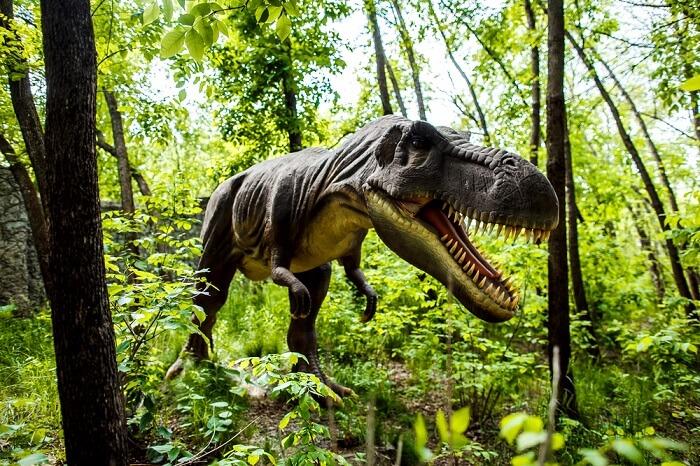 fossil park in maharashtra