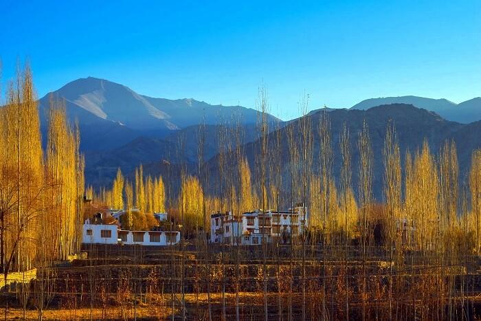 homestays in ladakh cover