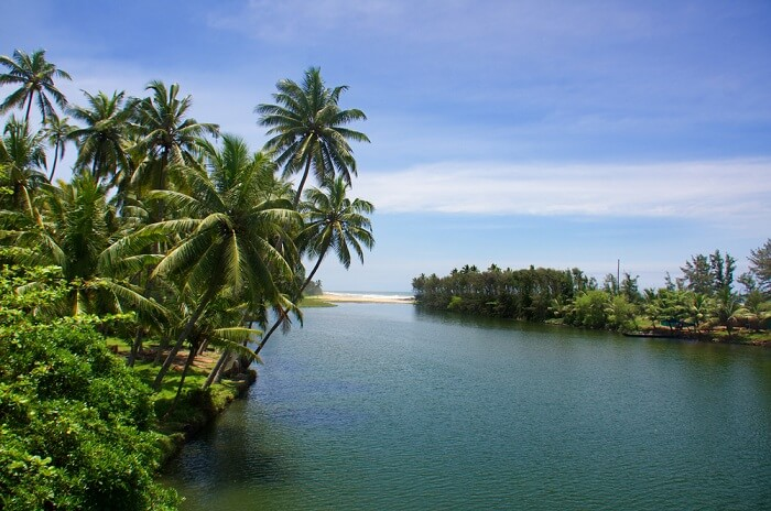 kappil lake in varkala