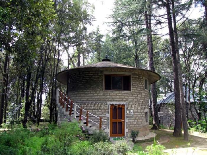 khali estate in binsar