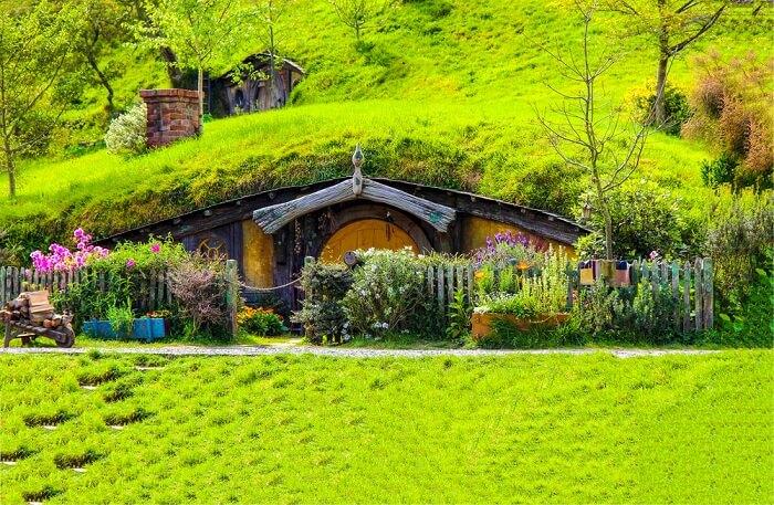 a house amid greenery