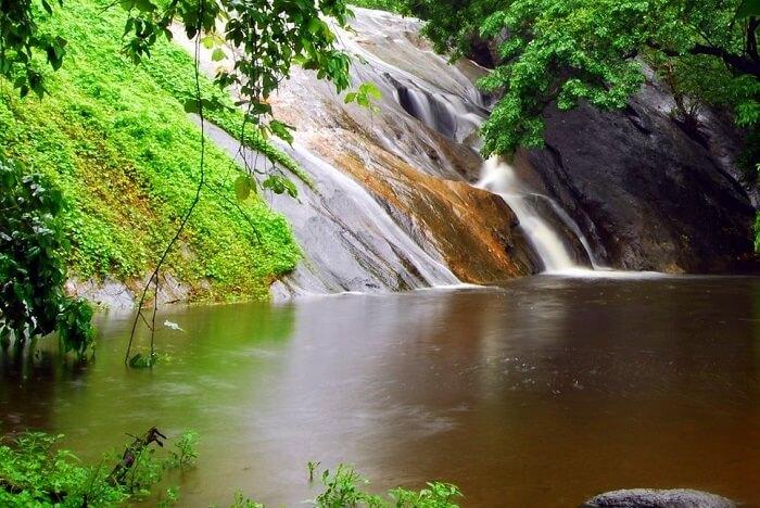 visit Dhoni Waterfalls palakkad