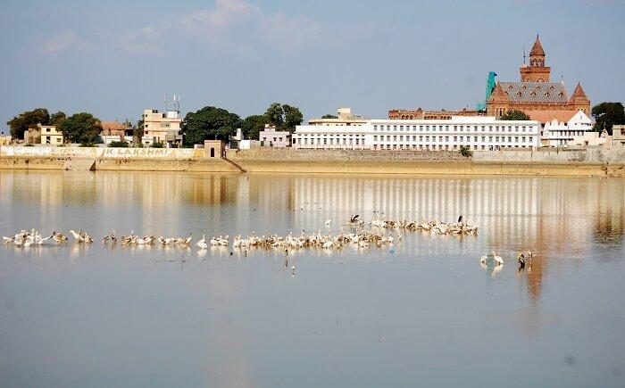 Hamirsar Lake Bhuj