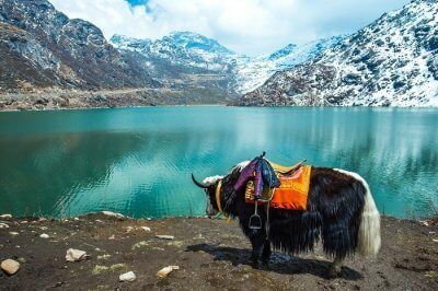 Gangtok in summer blog image