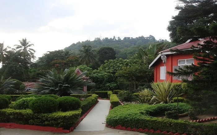 Green Wood Resort ss10052018