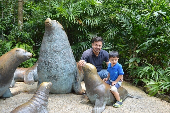 anshu singapore trip: seals