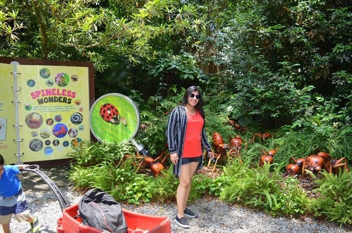 anshu singapore trip: anshu in zoo