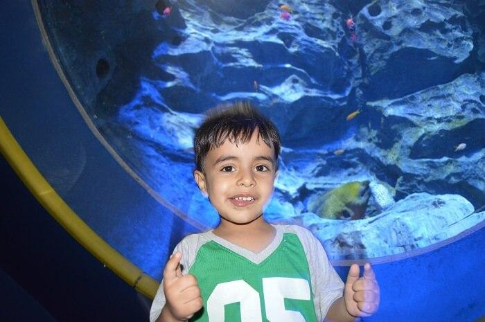 anshu singapore trip: aquarium