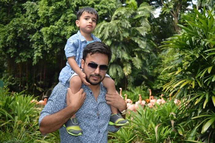 anshu singapore trip: sushant son in bird park