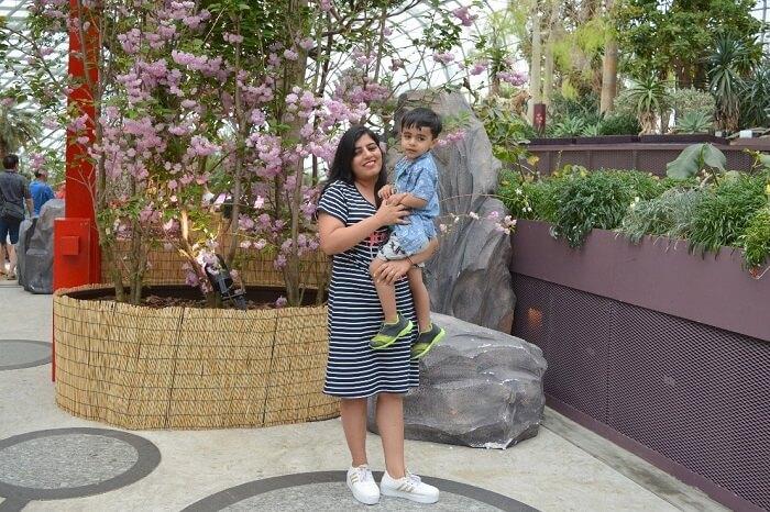 anshu singapore trip: anshu with son near waterfall
