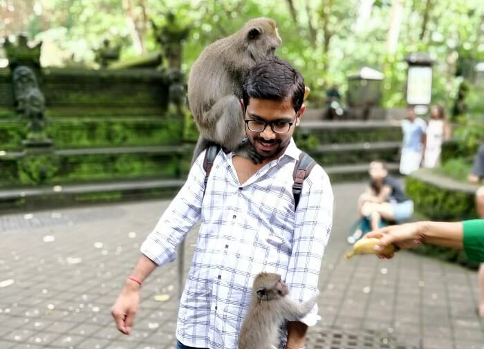 man posing with monkey in bali