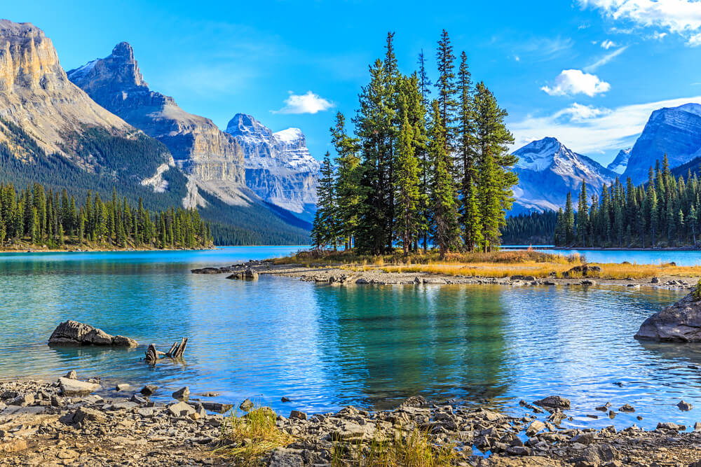 the gorgeous Jasper National Park