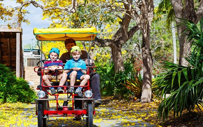 Relish the nature with over two-thousand animals at Zoo Miami