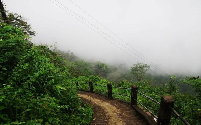 acj-1405-trekking-in-shillong (5)