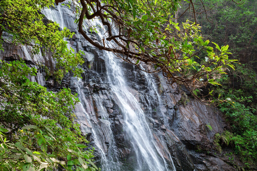 the gorgeous waterfall in Pachmarhi