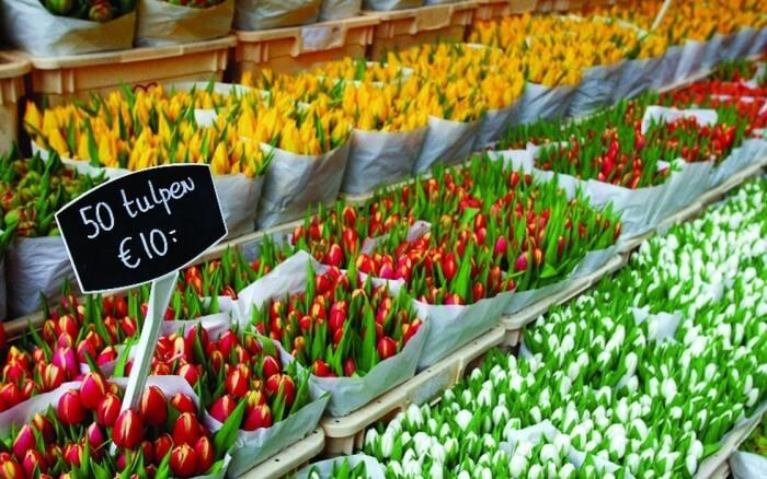 Flower Market - Bloemenmarkt