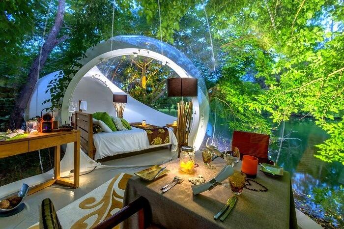 mauritius bubble lodge stargazing cover image