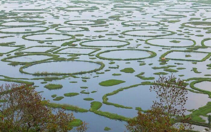 the gorgeous Loktak Lake ss01052018