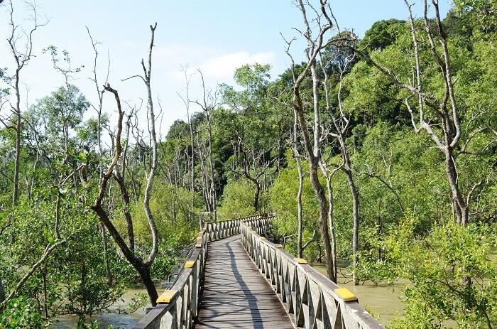 Bako National Park