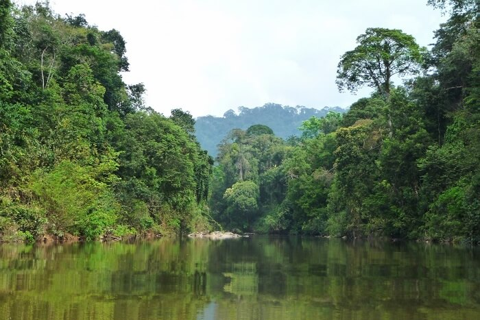 Endau-Rompin National Park