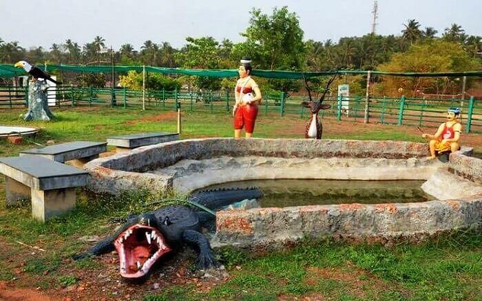 Bekal Hole Aqua Park