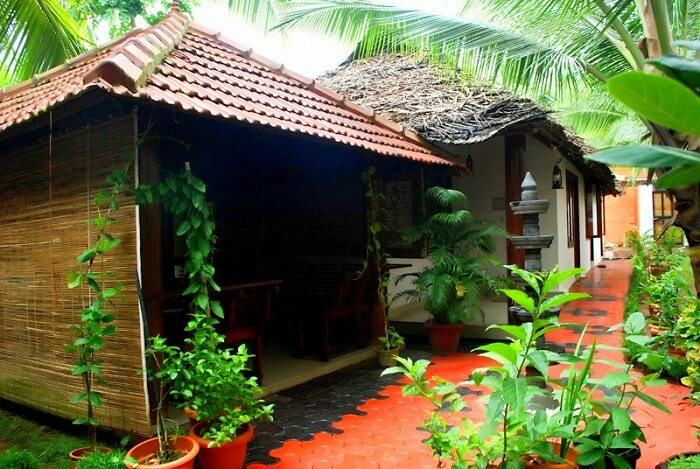 Ayurvedic Resort is a terrific place to stay