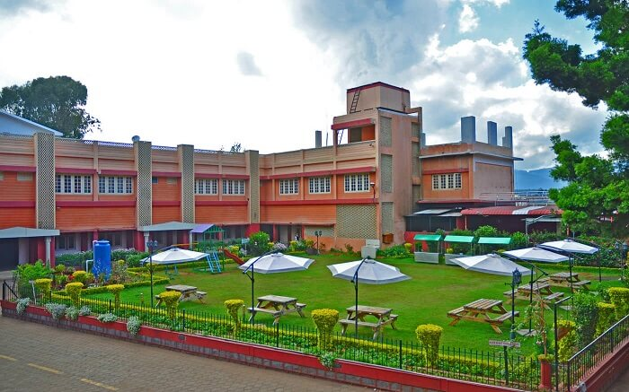 Gorgeous green lawn area of Hotel Vivek
